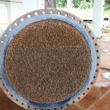 Incrustação de mexilhão-dourado em estruturas hidráulicas de Estações de Tratamento de Água