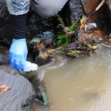 Amostragem de água em riachos para avaliação molecular da presença do mexilhão-dourado